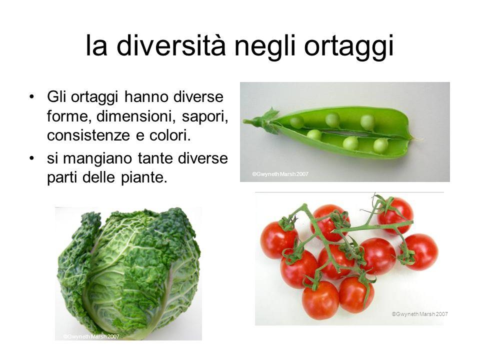 la diversità negli ortaggi