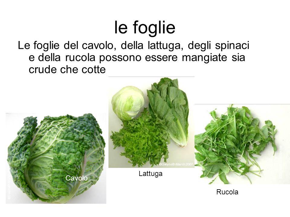 le foglie Le foglie del cavolo, della lattuga, degli spinaci e della rucola possono essere mangiate sia crude che cotte.