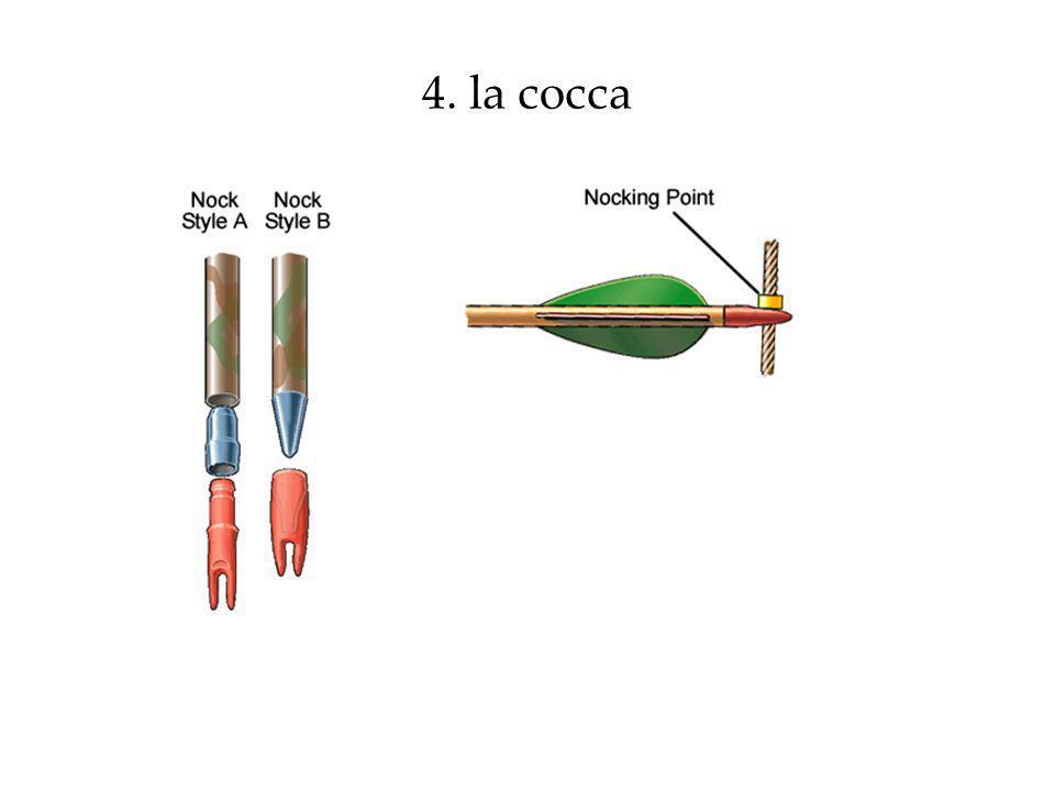4. la cocca