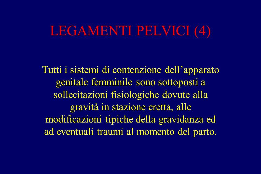 LEGAMENTI PELVICI (4)