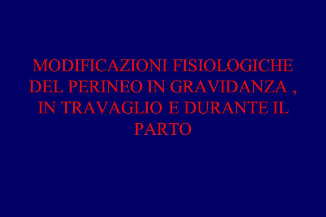 MODIFICAZIONI FISIOLOGICHE DEL PERINEO IN GRAVIDANZA , IN TRAVAGLIO E DURANTE IL PARTO