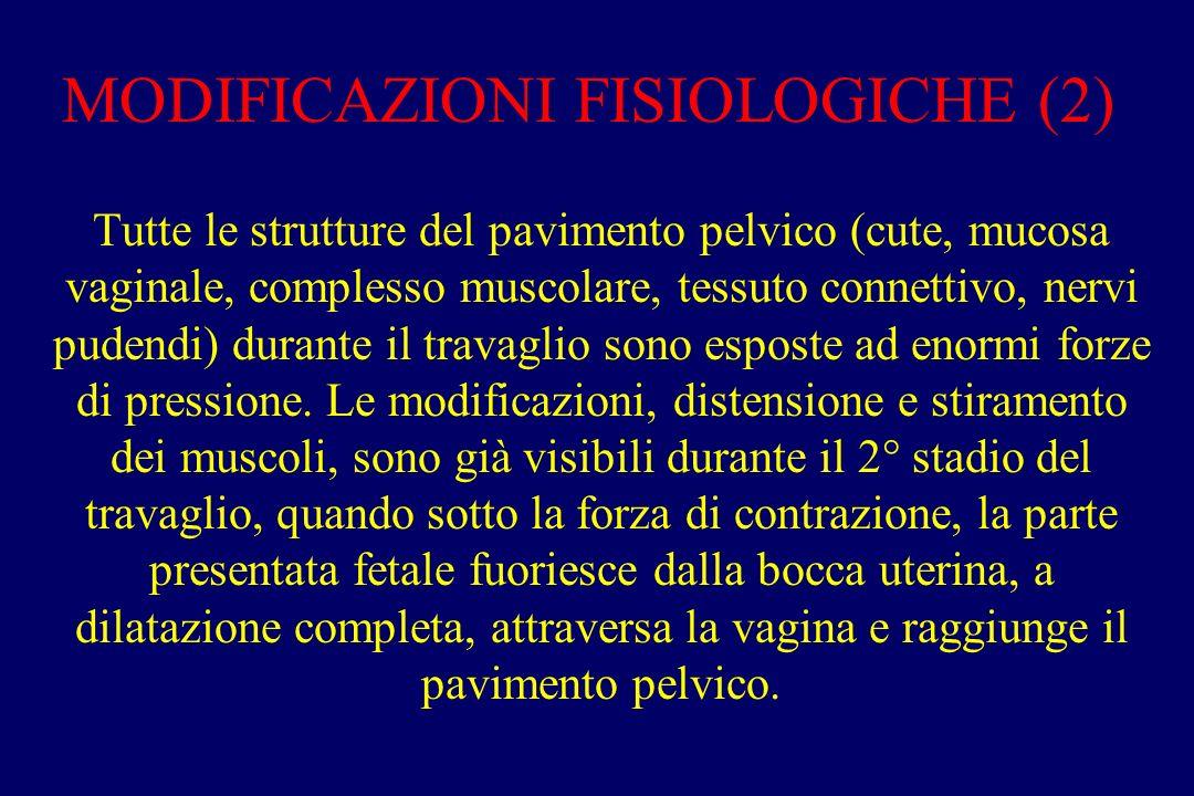 MODIFICAZIONI FISIOLOGICHE (2)