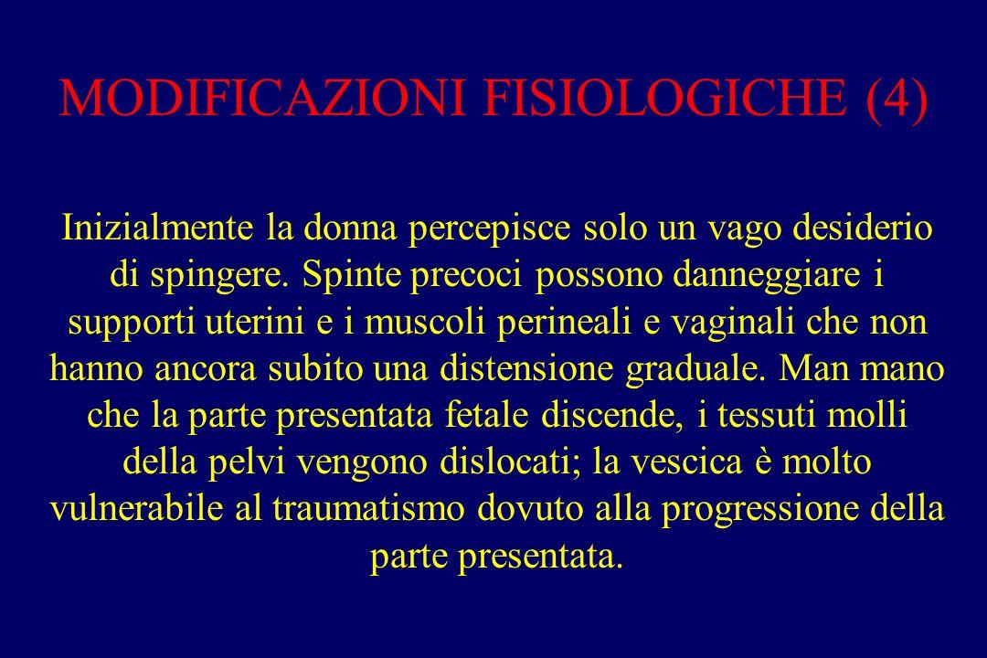 MODIFICAZIONI FISIOLOGICHE (4)