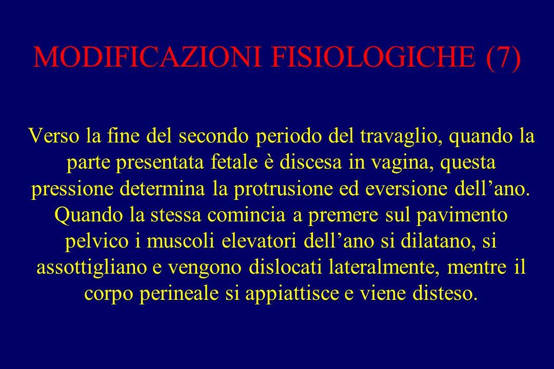 MODIFICAZIONI FISIOLOGICHE (7)