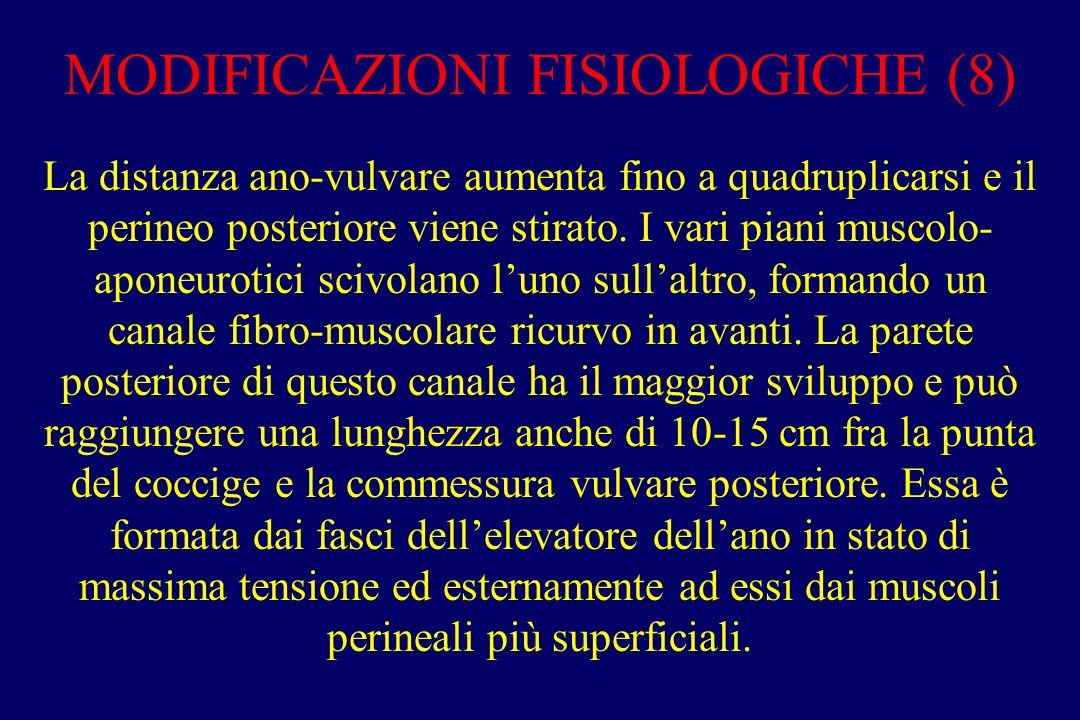 MODIFICAZIONI FISIOLOGICHE (8)
