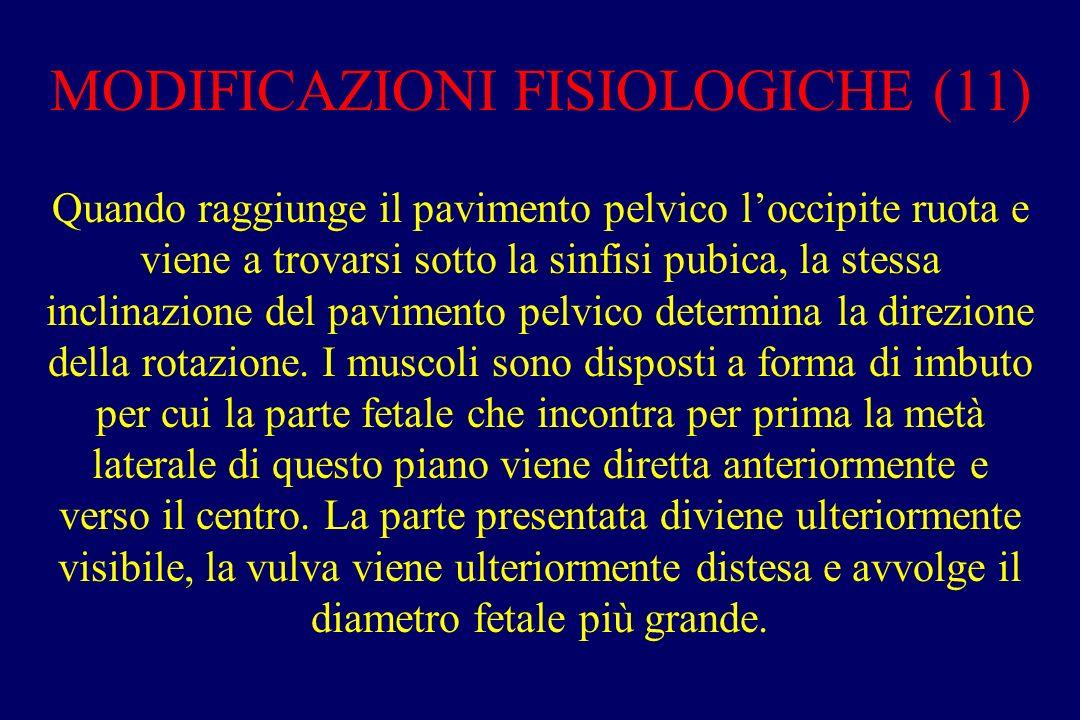 MODIFICAZIONI FISIOLOGICHE (11)