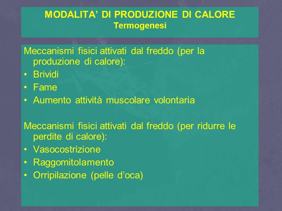 MODALITA' DI PRODUZIONE DI CALORE Termogenesi