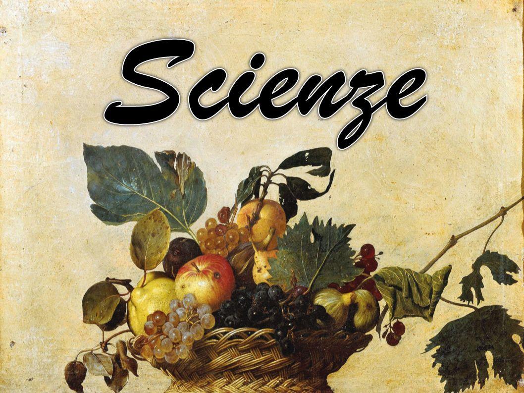 Scienze