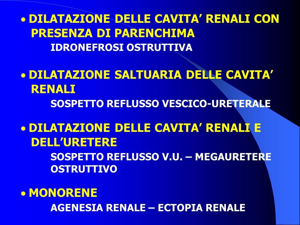 · DILATAZIONE DELLE CAVITA' RENALI CON