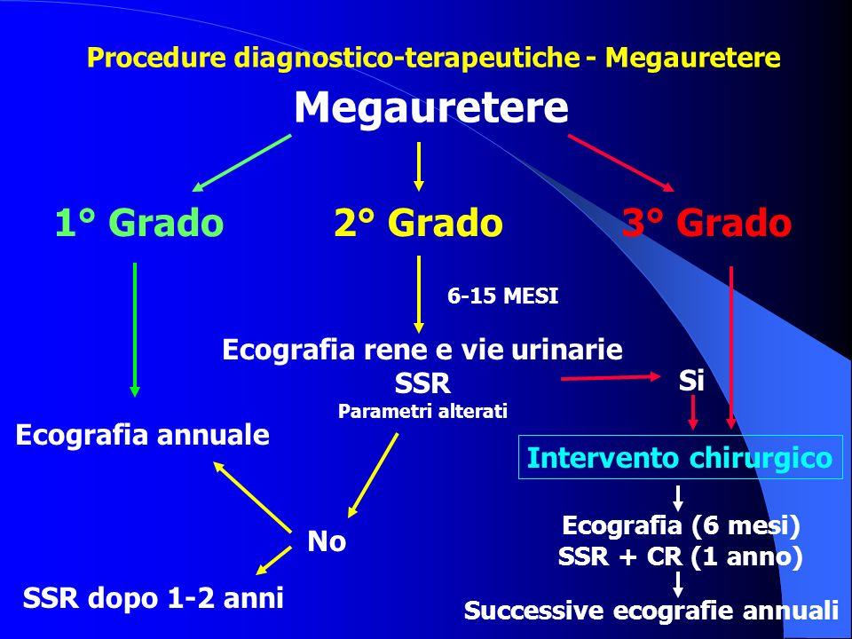 Ecografia rene e vie urinarie Successive ecografie annuali
