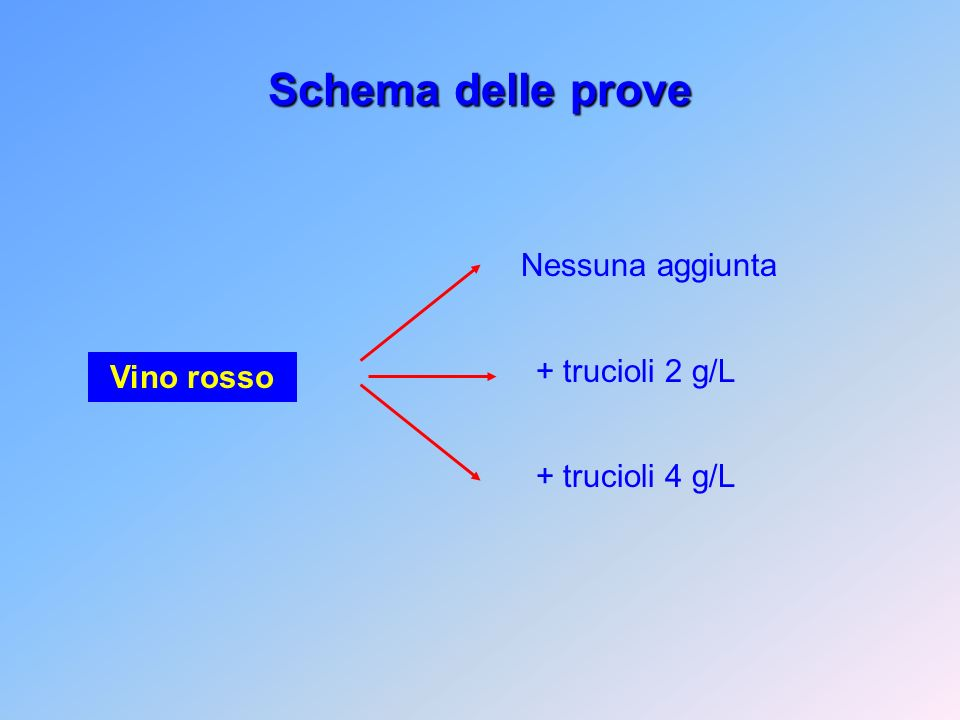 Schema delle prove Nessuna aggiunta + trucioli 2 g/L + trucioli 4 g/L