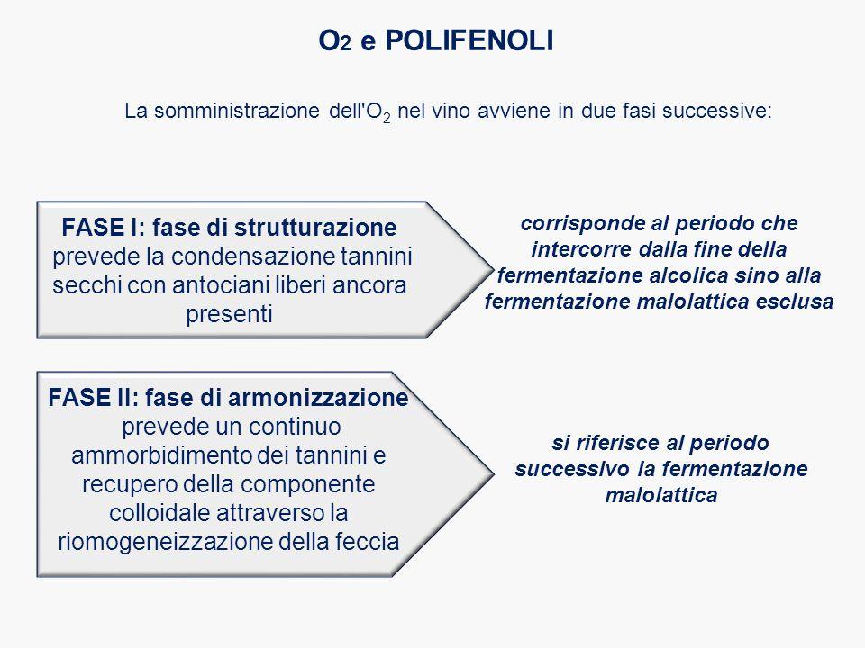 O2 e POLIFENOLI FASE I: fase di strutturazione