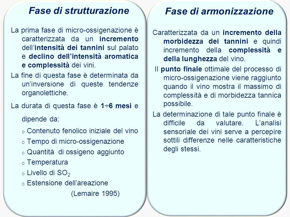 Fase di strutturazione Fase di armonizzazione