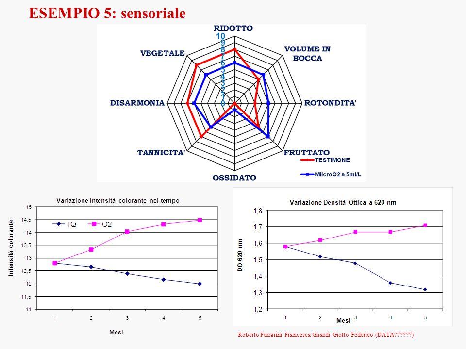 ESEMPIO 5: sensoriale Roberto Ferrarini Francesca Girardi Giotto Federico (DATA )