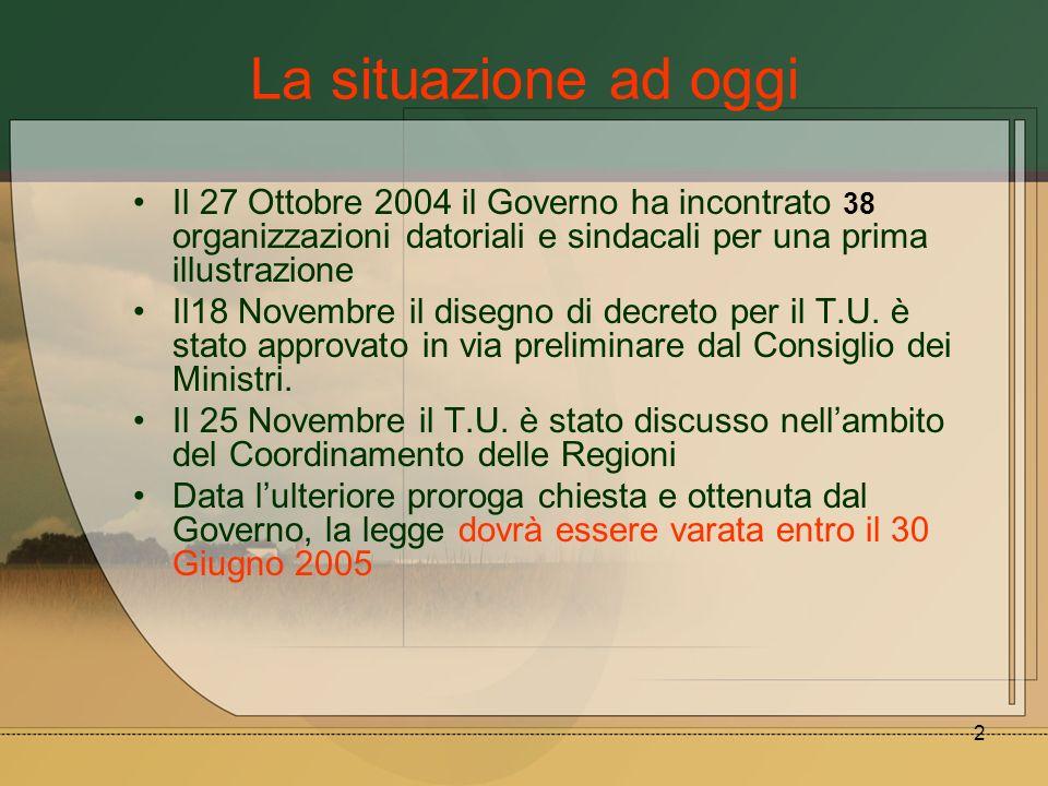 La situazione ad oggi Il 27 Ottobre 2004 il Governo ha incontrato 38 organizzazioni datoriali e sindacali per una prima illustrazione.