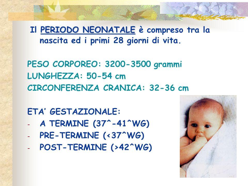 Il PERIODO NEONATALE è compreso tra la nascita ed i primi 28 giorni di vita.