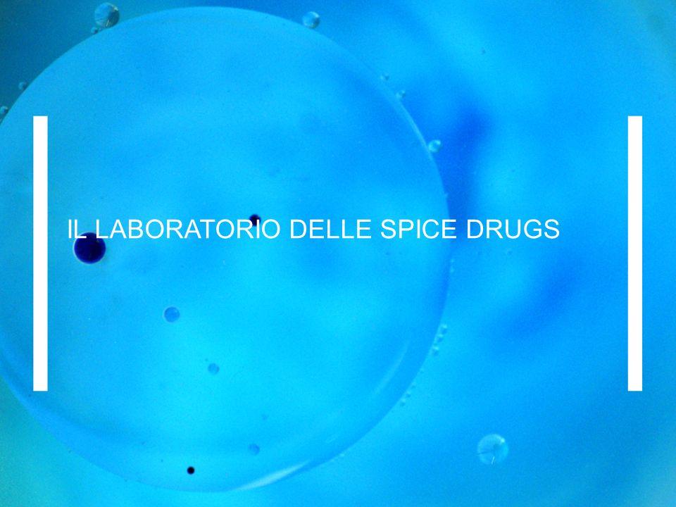 IL LABORATORIO DELLE SPICE DRUGS
