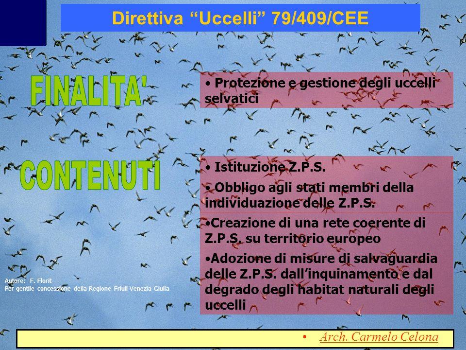 Direttiva Uccelli 79/409/CEE