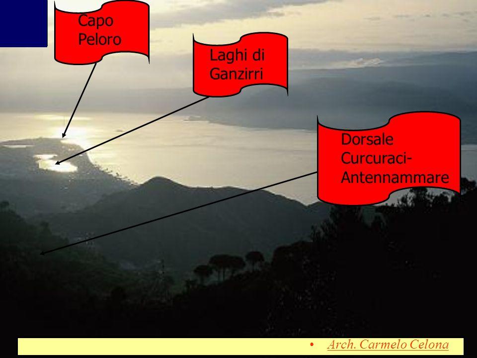 Dorsale Curcuraci- Antennammare