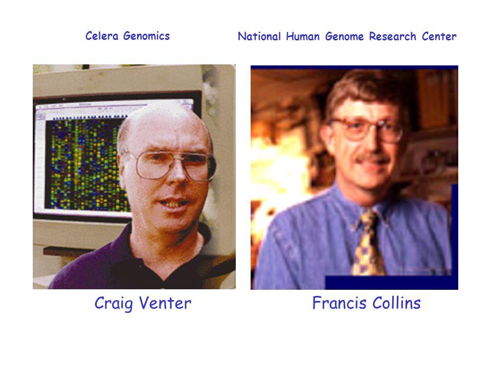 Craig Venter Francis Collins Celera Genomics