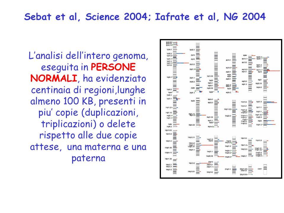 7 Sebat et al, Science 2004; Iafrate et al, NG 2004.