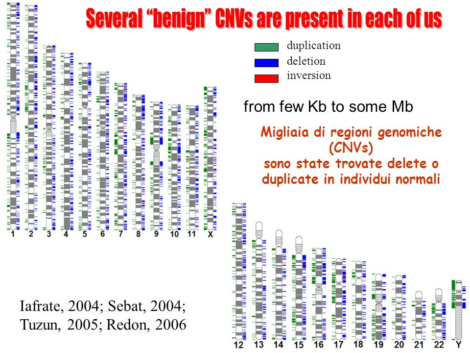 Several benign CNVs are present in each of us