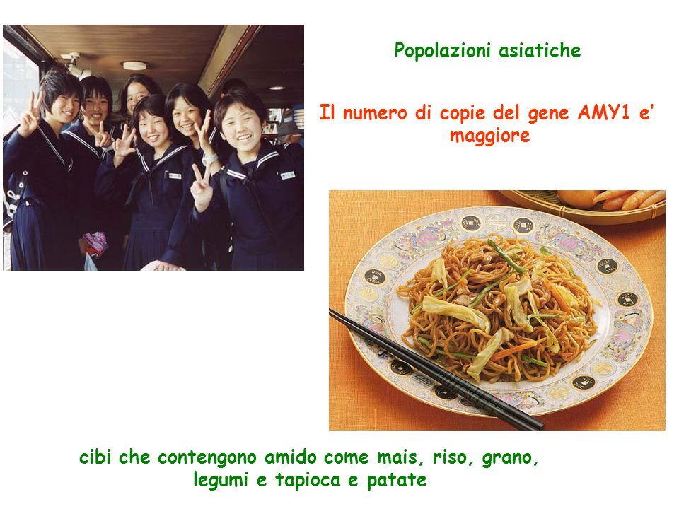 Popolazioni asiatiche