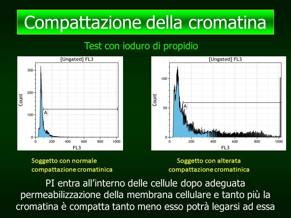 Compattazione della cromatina