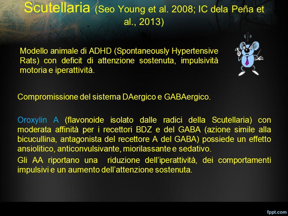 Scutellaria (Seo Young et al. 2008; IC dela Peña et al., 2013)