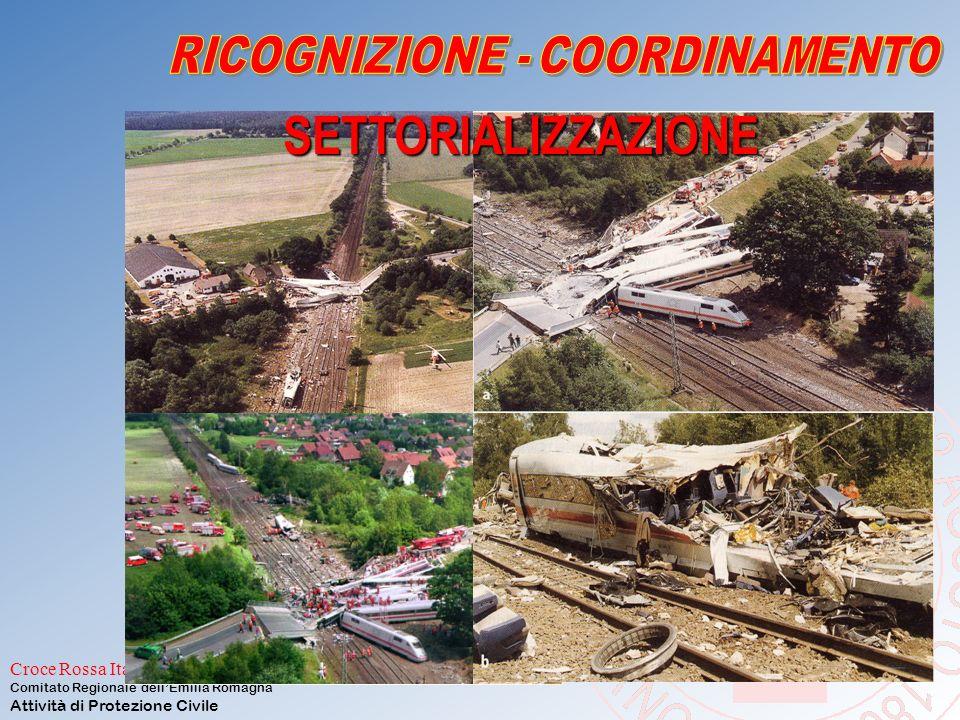 RICOGNIZIONE - COORDINAMENTO