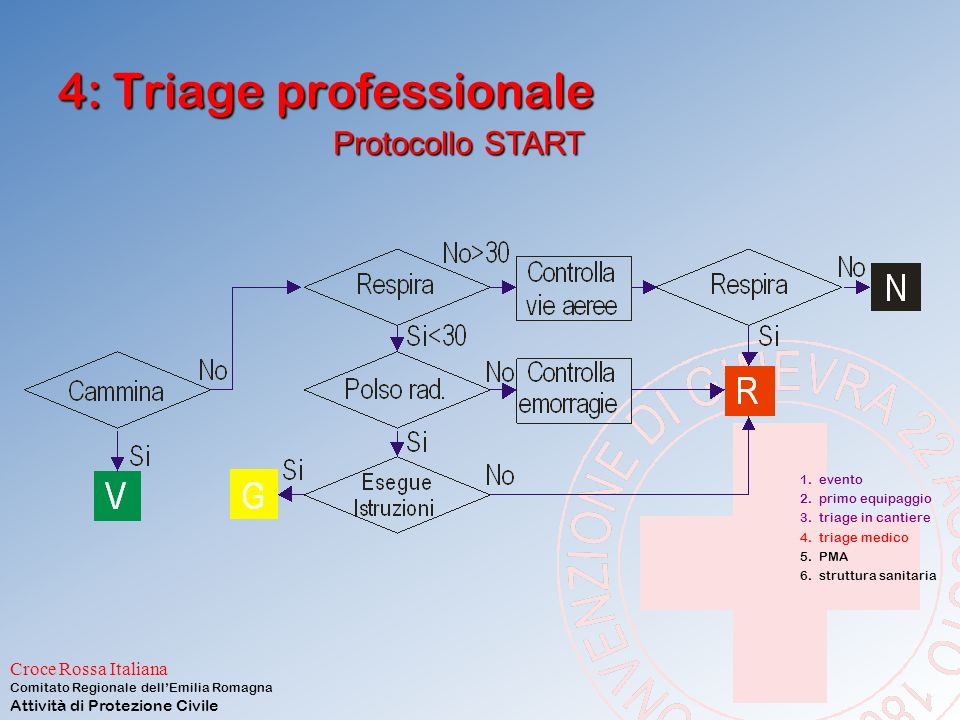 4: Triage professionale