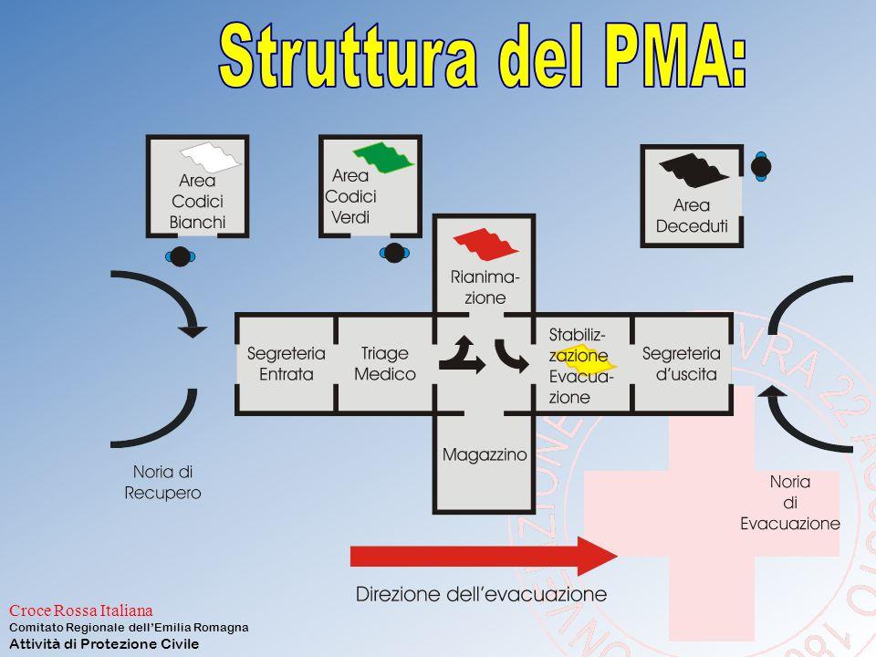 Struttura del PMA: