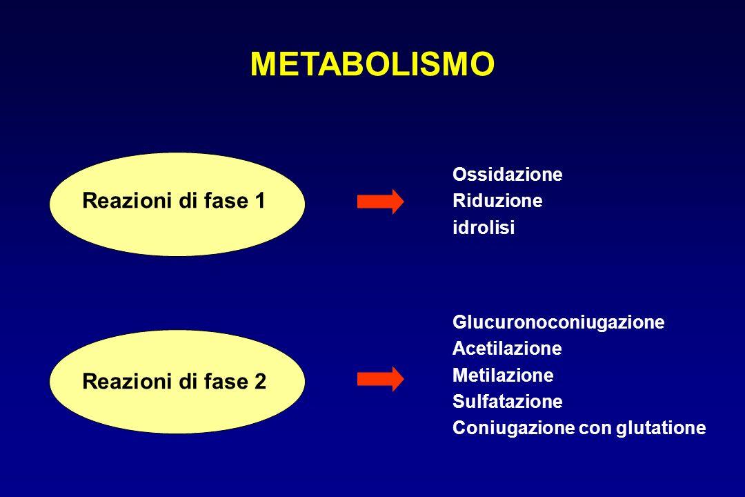 METABOLISMO Reazioni di fase 1 Reazioni di fase 2 Ossidazione