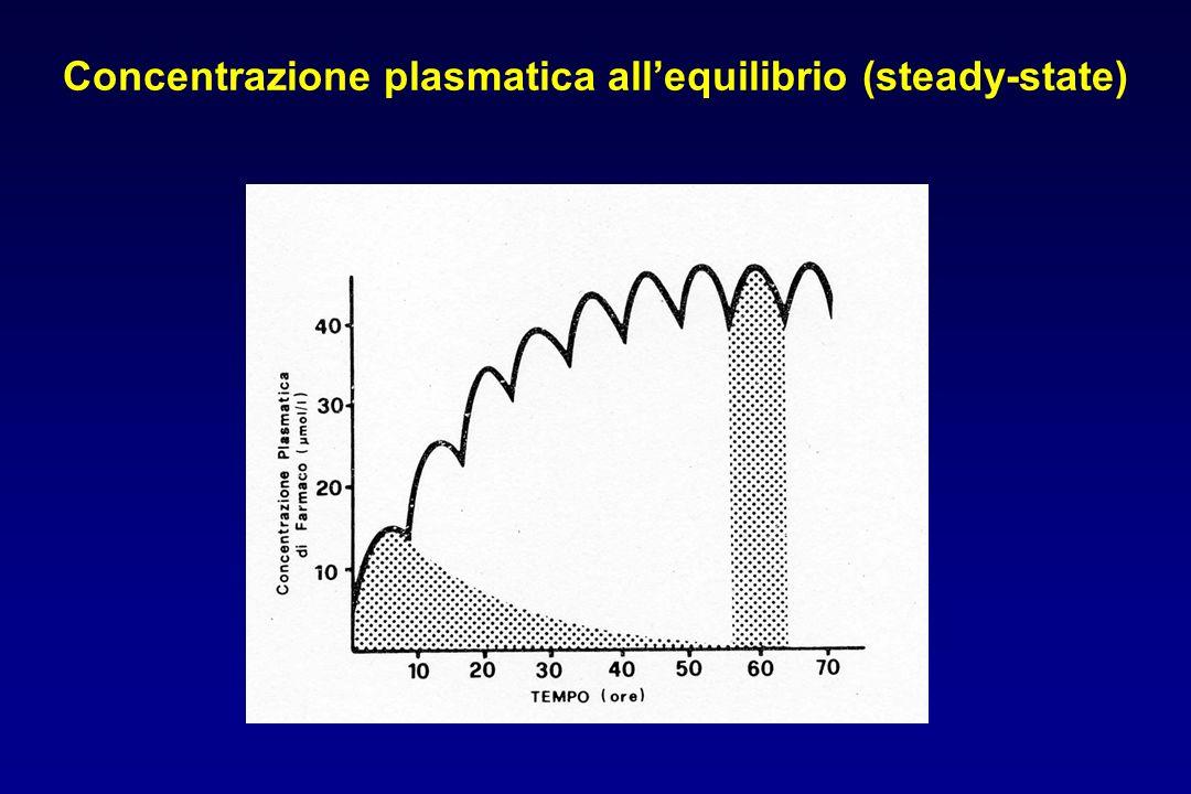 Concentrazione plasmatica all'equilibrio (steady-state)