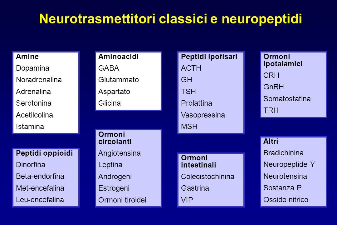 Neurotrasmettitori classici e neuropeptidi