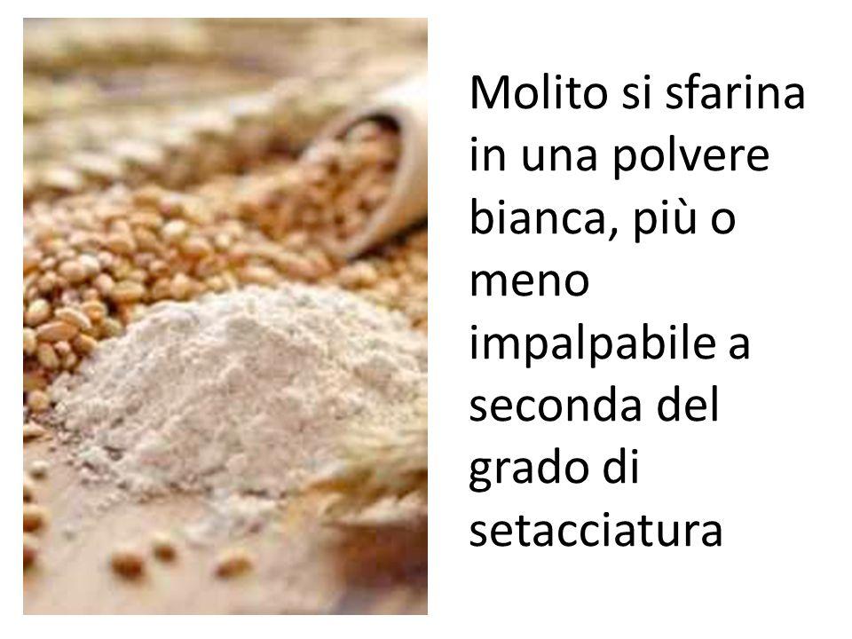 Molito si sfarina in una polvere bianca, più o meno impalpabile a seconda del grado di setacciatura