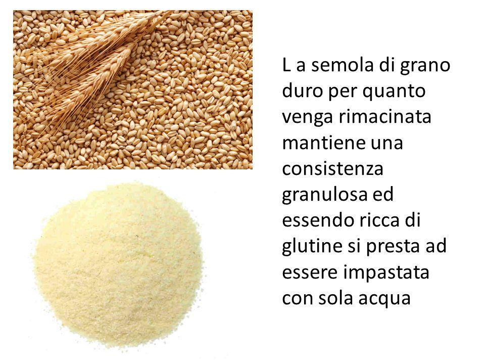 L a semola di grano duro per quanto venga rimacinata mantiene una consistenza granulosa ed essendo ricca di glutine si presta ad essere impastata con sola acqua