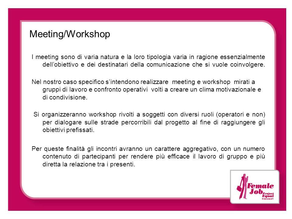 Meeting/Workshop