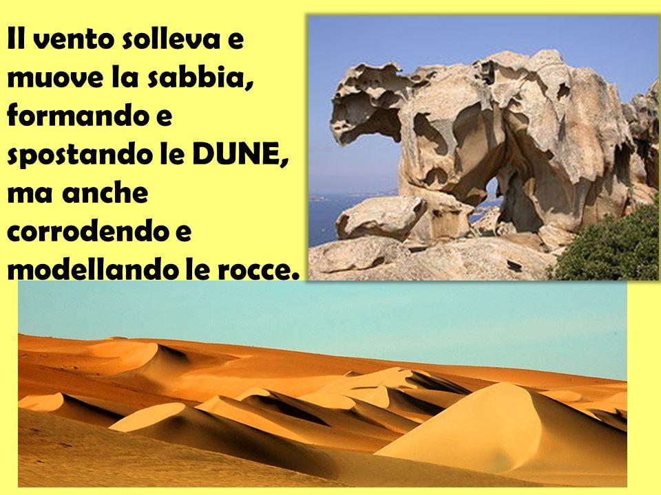 Il vento solleva e muove la sabbia, formando e spostando le DUNE, ma anche corrodendo e modellando le rocce.