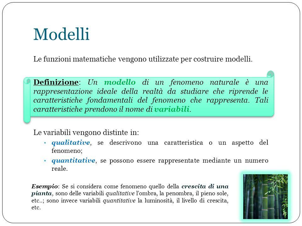 Modelli Le funzioni matematiche vengono utilizzate per costruire modelli.