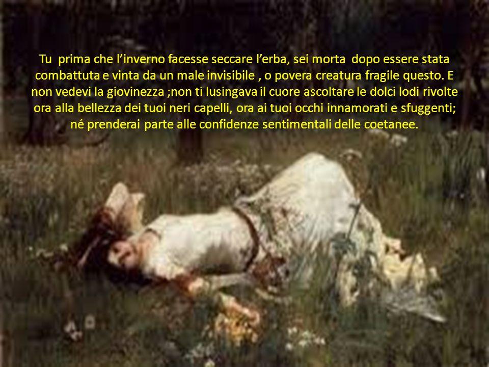 Tu prima che l'inverno facesse seccare l'erba, sei morta dopo essere stata combattuta e vinta da un male invisibile , o povera creatura fragile questo.