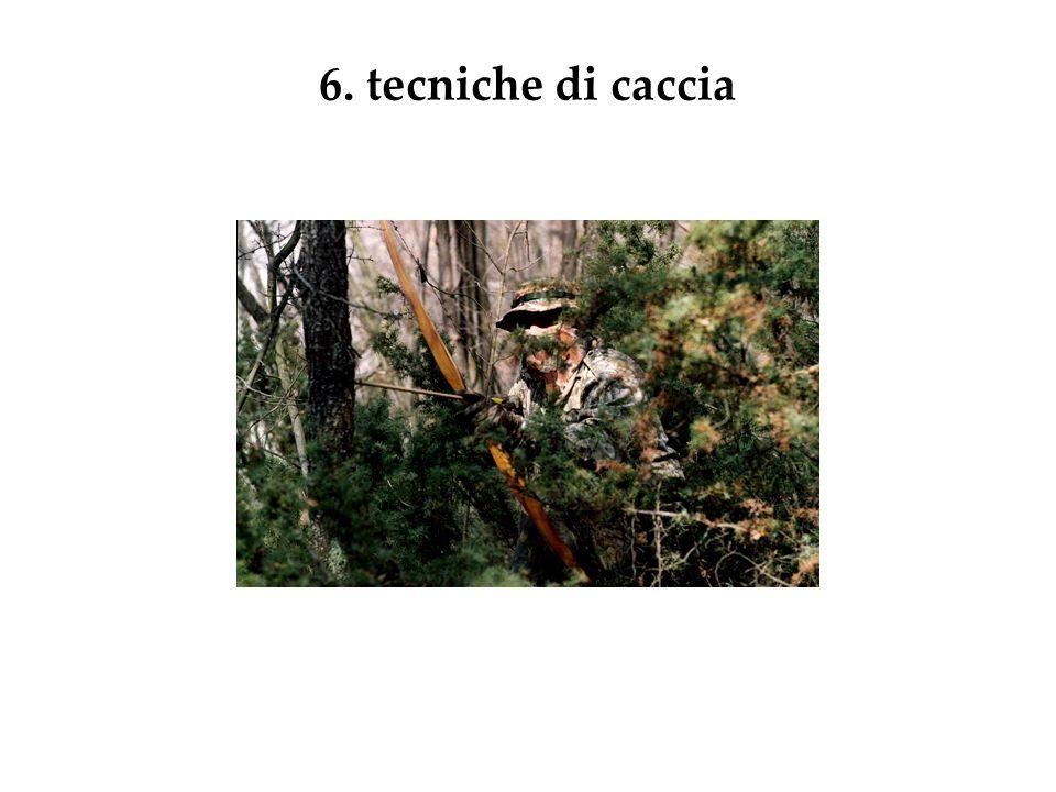 6. tecniche di caccia