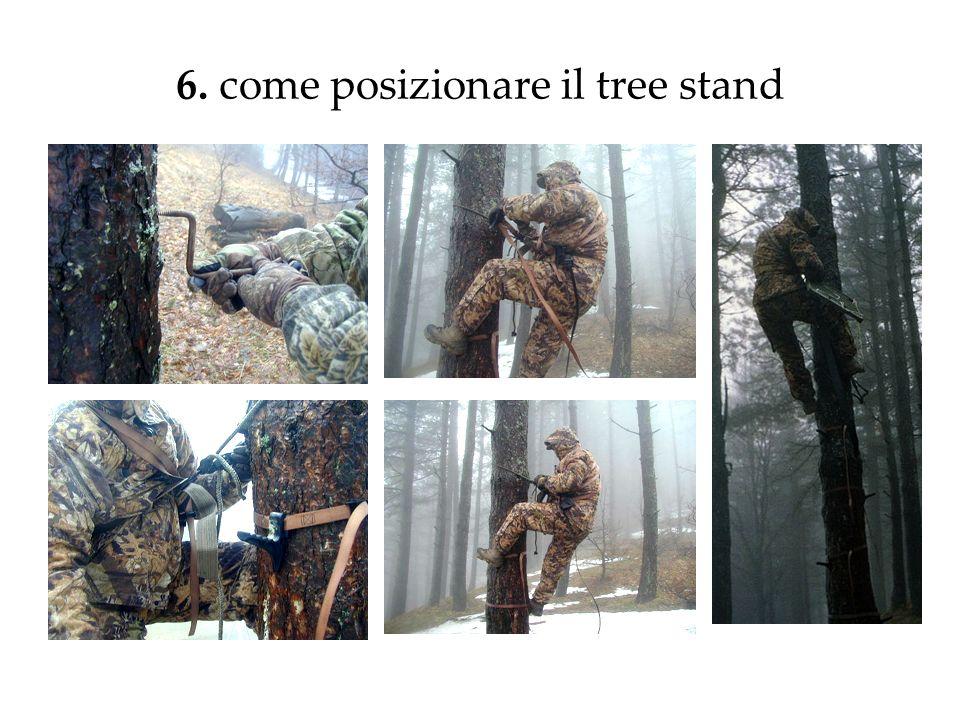 6. come posizionare il tree stand