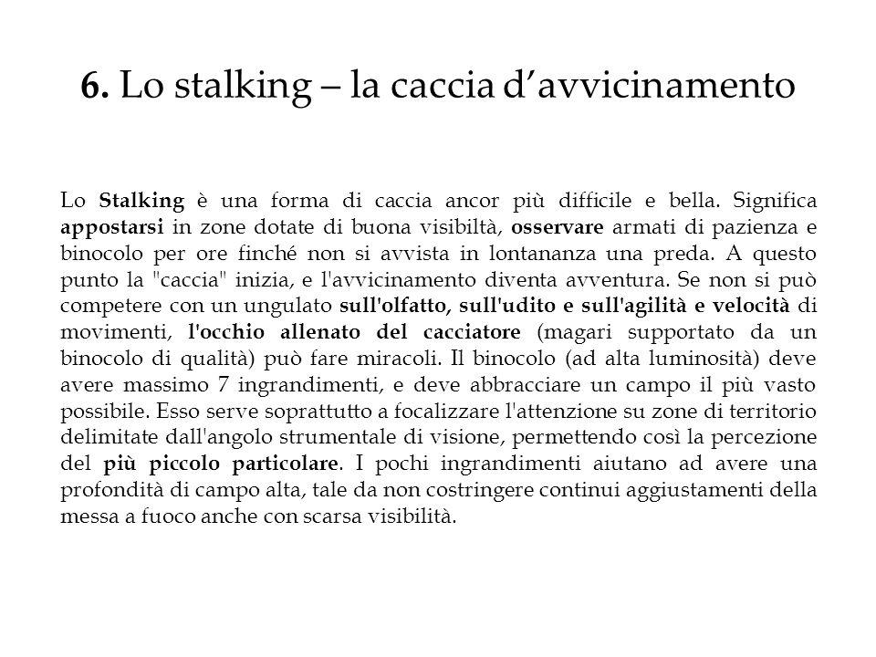 6. Lo stalking – la caccia d'avvicinamento