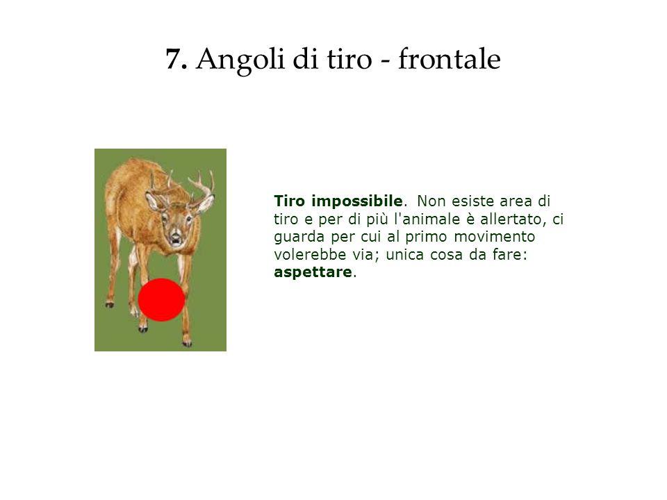 7. Angoli di tiro - frontale