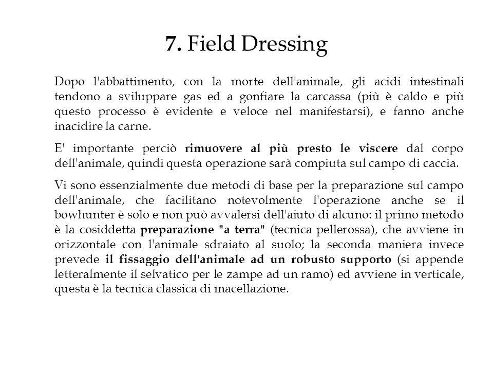 7. Field Dressing