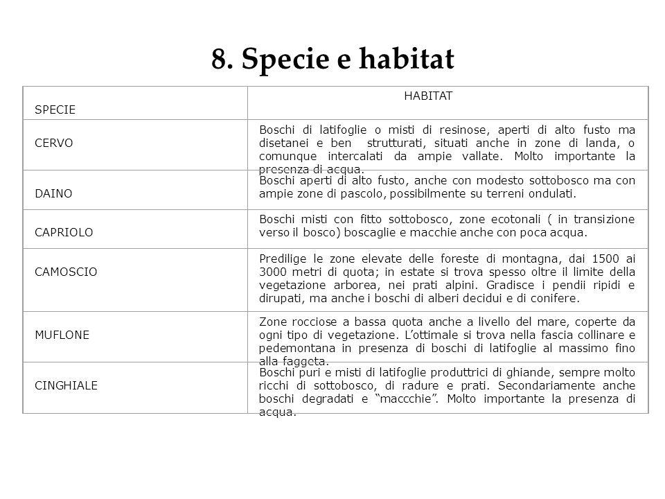8. Specie e habitat SPECIE HABITAT CERVO