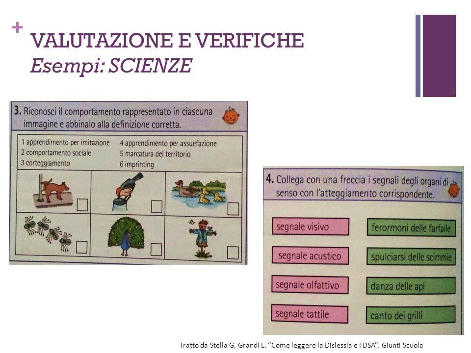 VALUTAZIONE E VERIFICHE Esempi: SCIENZE
