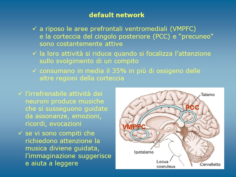 PCC VMPFC default network
