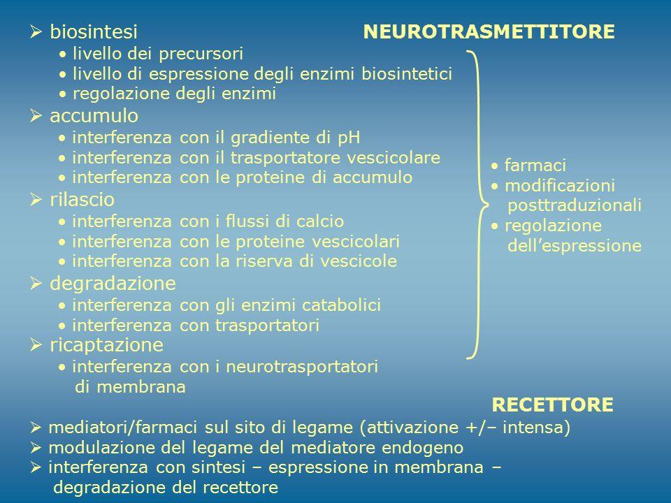 biosintesi NEUROTRASMETTITORE accumulo rilascio degradazione